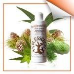 shampessentiel-peau-grasse corné