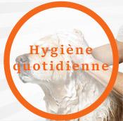 L' Hygiène
